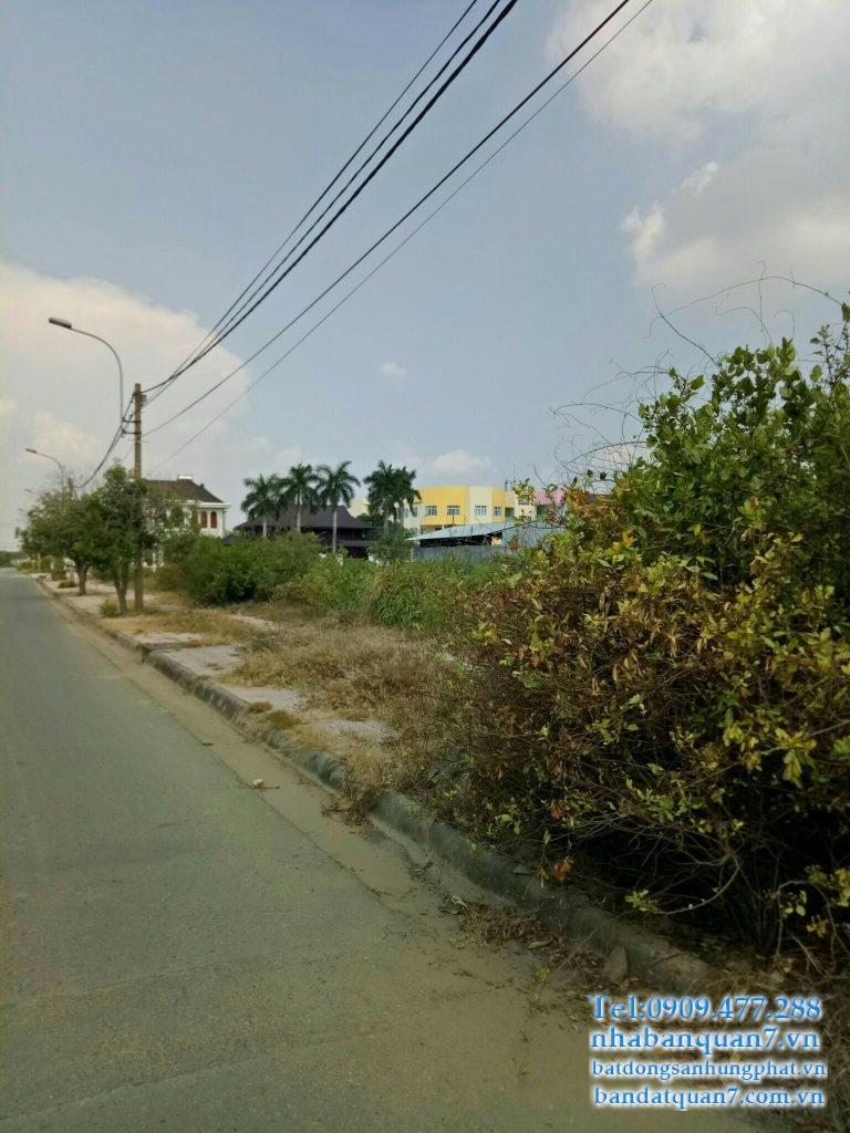 Bán đất Phú Mỹ Chợ Lớn