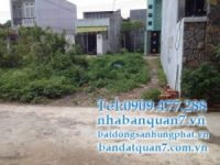 Bán đất phường Tân Hưng