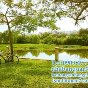 Bán đất mặt tiền đường số 65 Tân Quy Đông